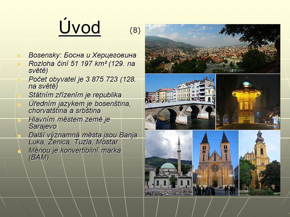 Geografie Země má přístup k Jaderskému moři a rozděluje tak Chorvatsko na dvě části Země má přístup k Jaderskému moři a rozděluje tak Chorvatsko na dvě části S mořem je spojena úzkým koridorem k přístavu Neum S mořem je spojena úzkým koridorem k přístavu Neum Hranice tvoří řeky (hlavně na severu a na východě), na jihozápadní straně je přirozenou hranicí soustava horských pásem Hranice tvoří řeky (hlavně na severu a na východě), na jihozápadní straně je přirozenou hranicí soustava horských pásem Skládá se ze dvou geografických a historických oblastí: větší Bosny a menší Hercegoviny na jihu Skládá se ze dvou geografických a historických oblastí: větší Bosny a menší Hercegoviny na jihu Bosna je velice hornatá země, totéž platí i o Hercegovině Bosna je velice hornatá země, totéž platí i o Hercegovině Rozprostírá se zde Panonská nížina a Dinárské hory Rozprostírá se zde Panonská nížina a Dinárské hory Nejvyšším vrcholem je Maglić (2 386 m) Nejvyšším vrcholem je Maglić (2 386 m) Významné řeky jsou např.