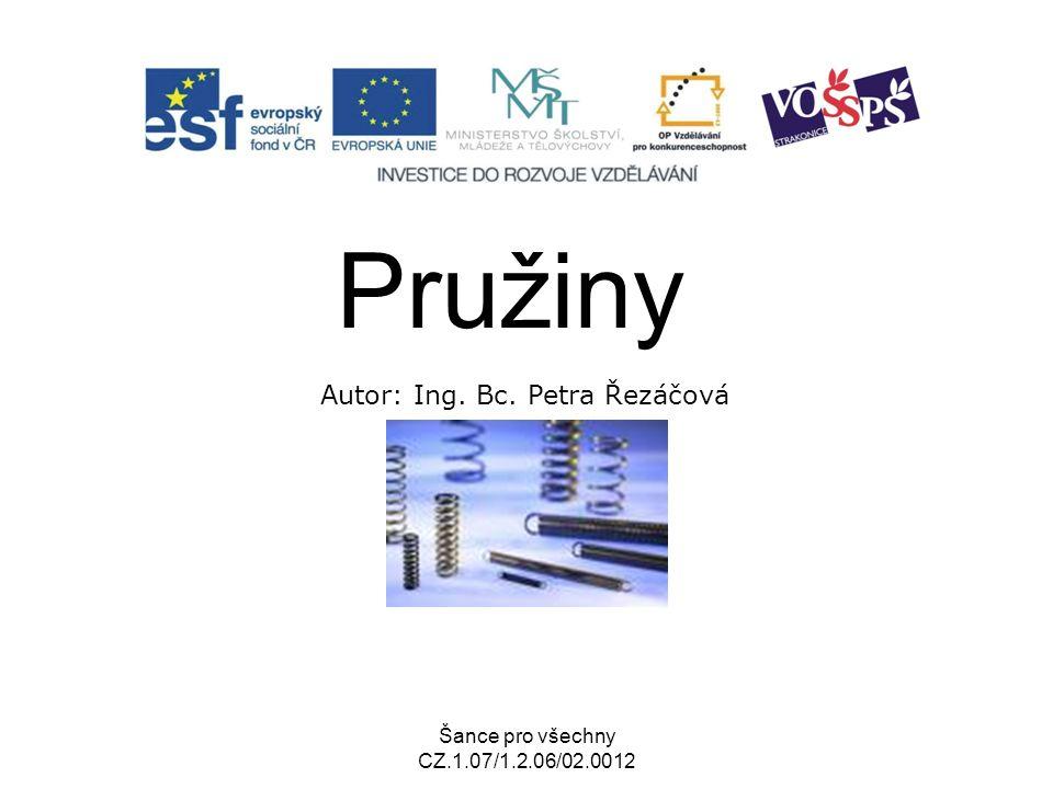 Šance pro všechny CZ.1.07/1.2.06/02.0012 Pružiny Autor: Ing. Bc. Petra Řezáčová