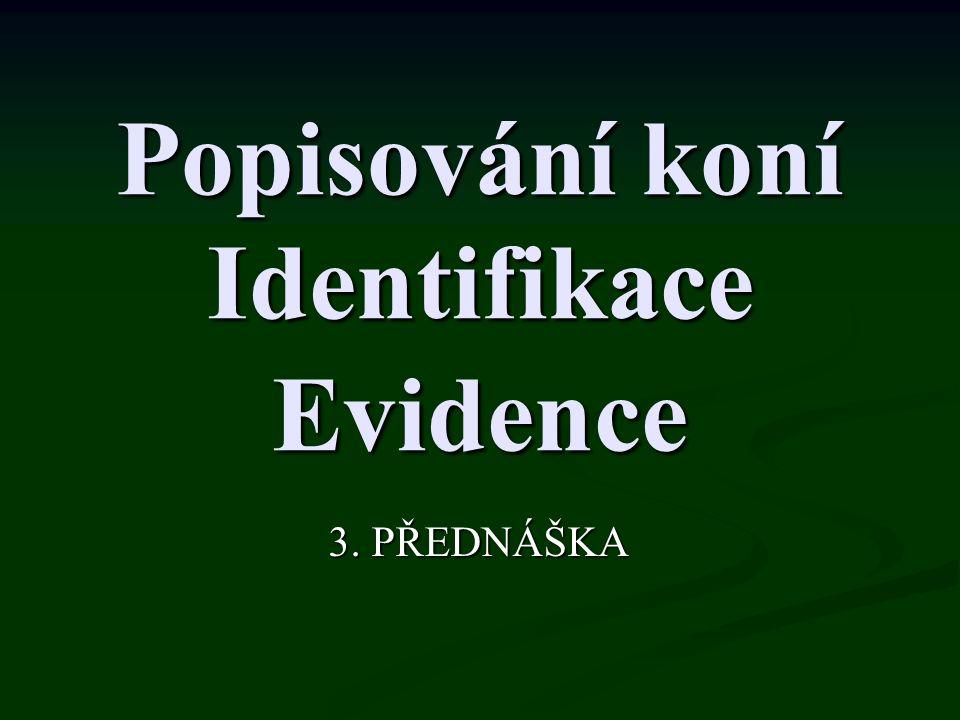 Popisování koní Identifikace Evidence 3. PŘEDNÁŠKA