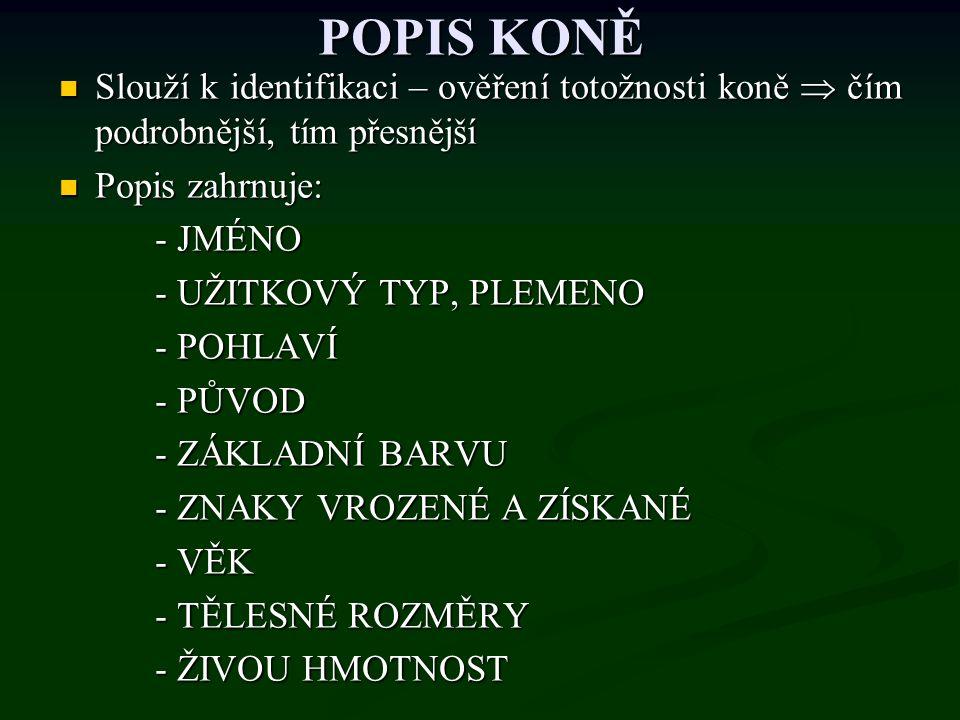 POPIS KONĚ Slouží k identifikaci – ověření totožnosti koně  čím podrobnější, tím přesnější Slouží k identifikaci – ověření totožnosti koně  čím podr