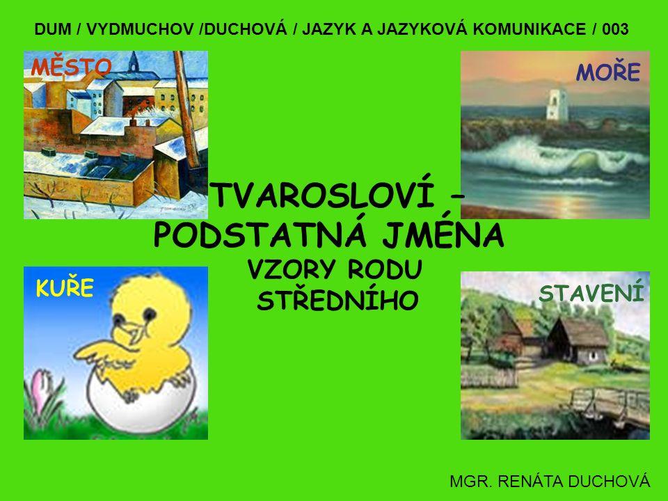 DUM / VYDMUCHOV /DUCHOVÁ / JAZYK A JAZYKOVÁ KOMUNIKACE / 003 TVAROSLOVÍ – PODSTATNÁ JMÉNA MGR.