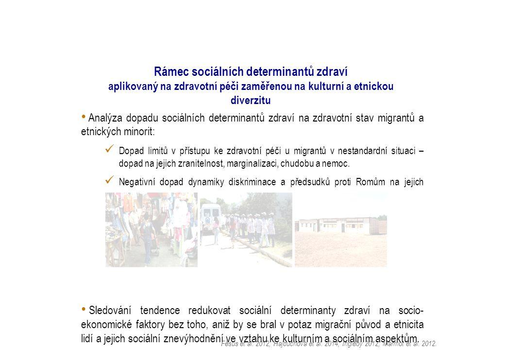 Analýza dopadu sociálních determinantů zdraví na zdravotní stav migrantů a etnických minorit: Dopad limitů v přístupu ke zdravotní péči u migrantů v nestandardní situaci – dopad na jejich zranitelnost, marginalizaci, chudobu a nemoc.