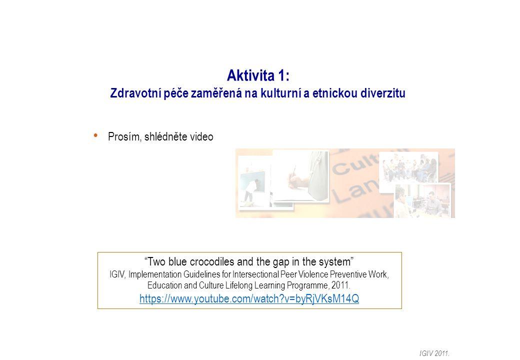 Aktivita 1: Zdravotní péče zaměřená na kulturní a etnickou diverzitu Prosím, shlédněte video IGIV 2011.