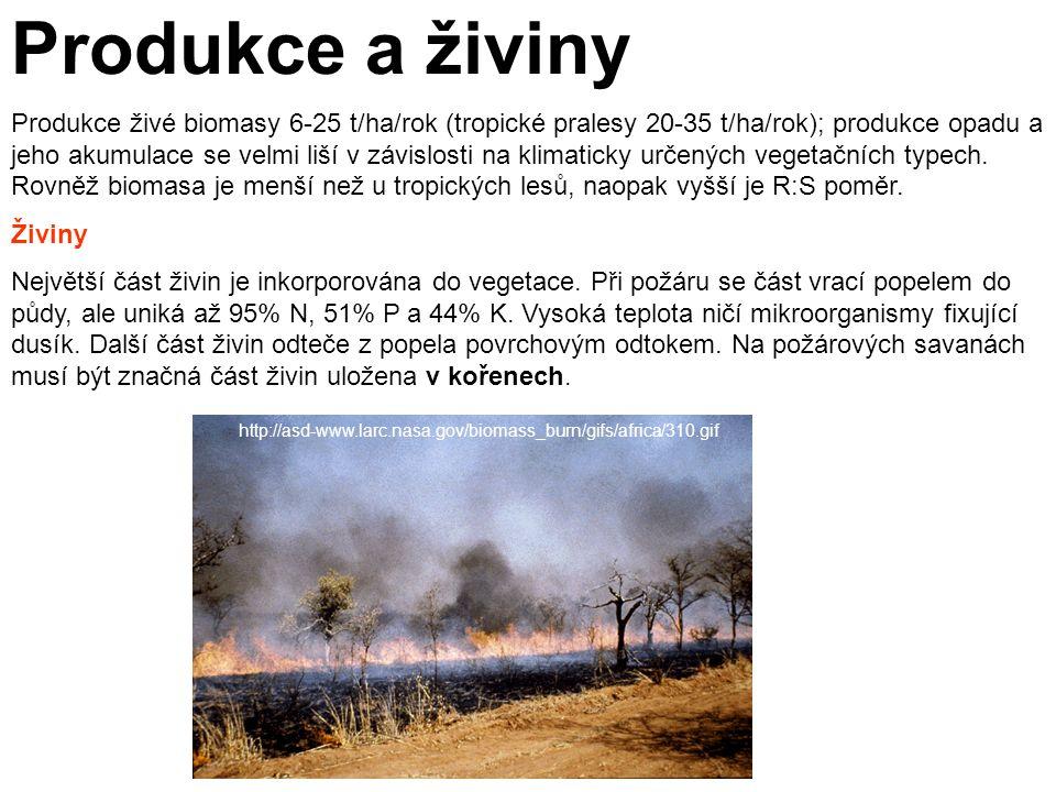 Produkce a živiny Produkce živé biomasy 6-25 t/ha/rok (tropické pralesy 20-35 t/ha/rok); produkce opadu a jeho akumulace se velmi liší v závislosti na klimaticky určených vegetačních typech.