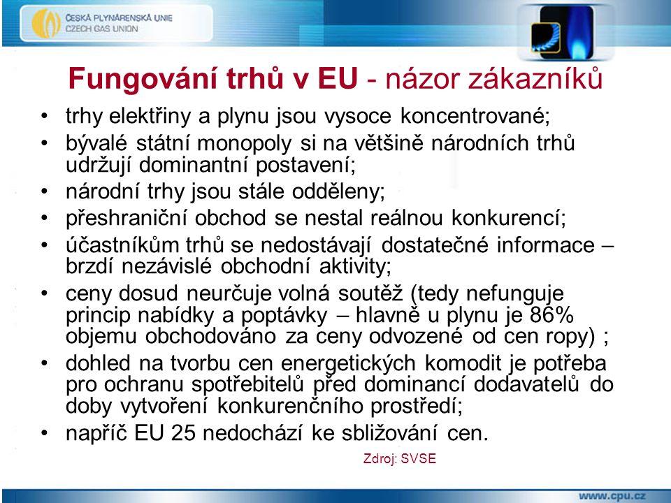 trh se zemním plynem není likvidní ani z hlediska objemu a zdrojů zemního plynu ani z hlediska přepravní kapacity; stále existuje 25 národních trhů v EU; zákazníci v zemích EU 25 mění dodavatele plynu jen ve velmi omezené míře; v budoucnu bude EU 25 soutěžit s Asií o dodávky plynu; záměr EK otevřít trh s plynem tak, aby producenti a obchodníci soutěžili o zákazníka se nezdařil; otázkou stále zůstává, zda se v oblasti plynárenství může vůbec zdařit.