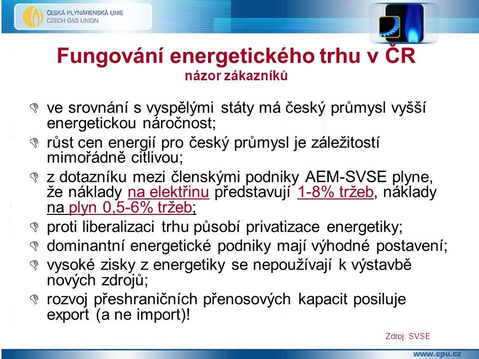  ve srovnání s vyspělými státy má český průmysl vyšší energetickou náročnost;  růst cen energií pro český průmysl je záležitostí mimořádně citlivou;  z dotazníku mezi členskými podniky AEM-SVSE plyne, že náklady na elektřinu představují 1-8% tržeb, náklady na plyn 0,5-6% tržeb;  proti liberalizaci trhu působí privatizace energetiky;  dominantní energetické podniky mají výhodné postavení;  vysoké zisky z energetiky se nepoužívají k výstavbě nových zdrojů;  rozvoj přeshraničních přenosových kapacit posiluje export (a ne import).
