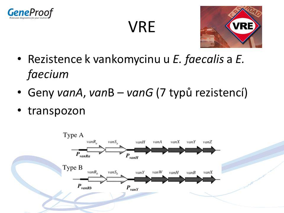 VRE Rezistence k vankomycinu u E. faecalis a E. faecium Geny vanA, vanB – vanG (7 typů rezistencí) transpozon