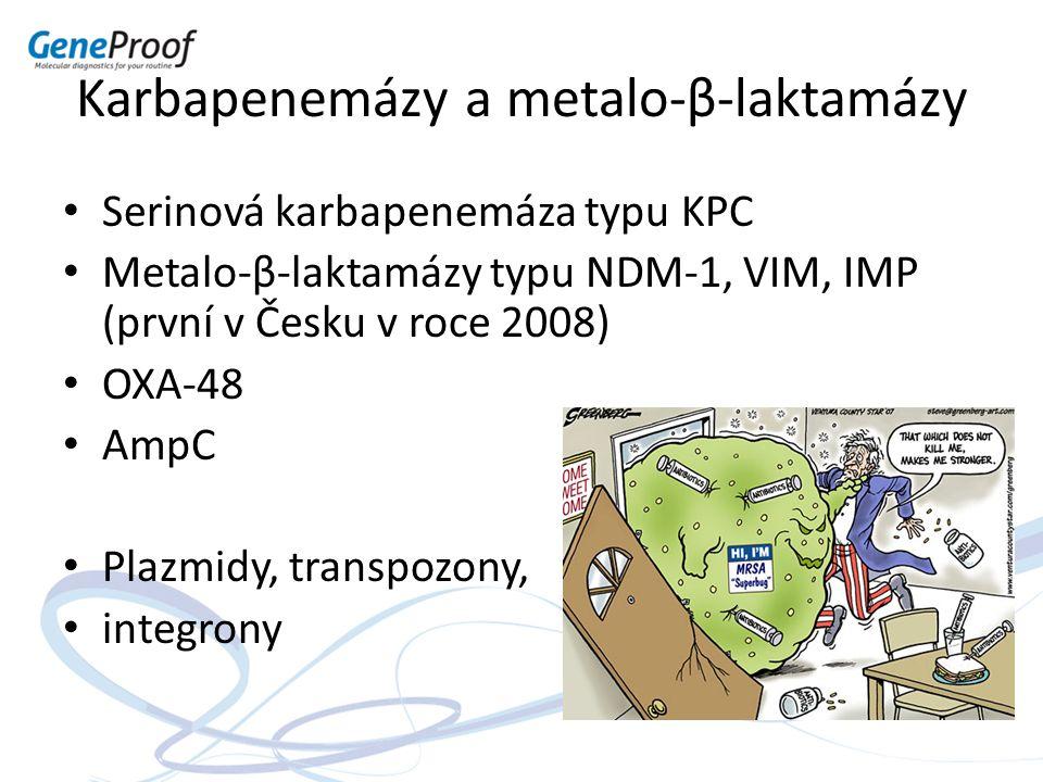 Karbapenemázy a metalo-β-laktamázy Serinová karbapenemáza typu KPC Metalo-β-laktamázy typu NDM-1, VIM, IMP (první v Česku v roce 2008) OXA-48 AmpC Pla