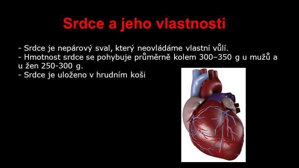 Anatomie srdce Plicní tepna: Přidává krev z pravé komory do plic.
