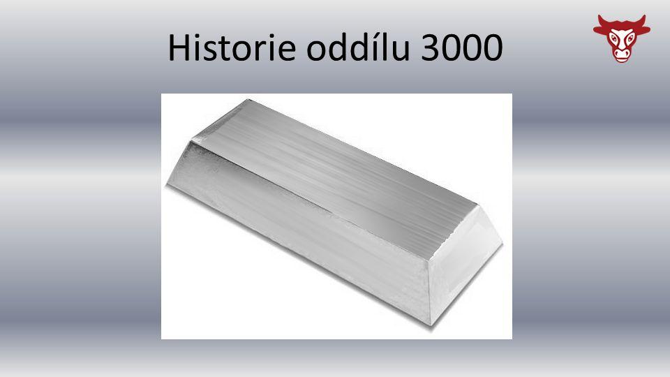 Historie oddílu 3000