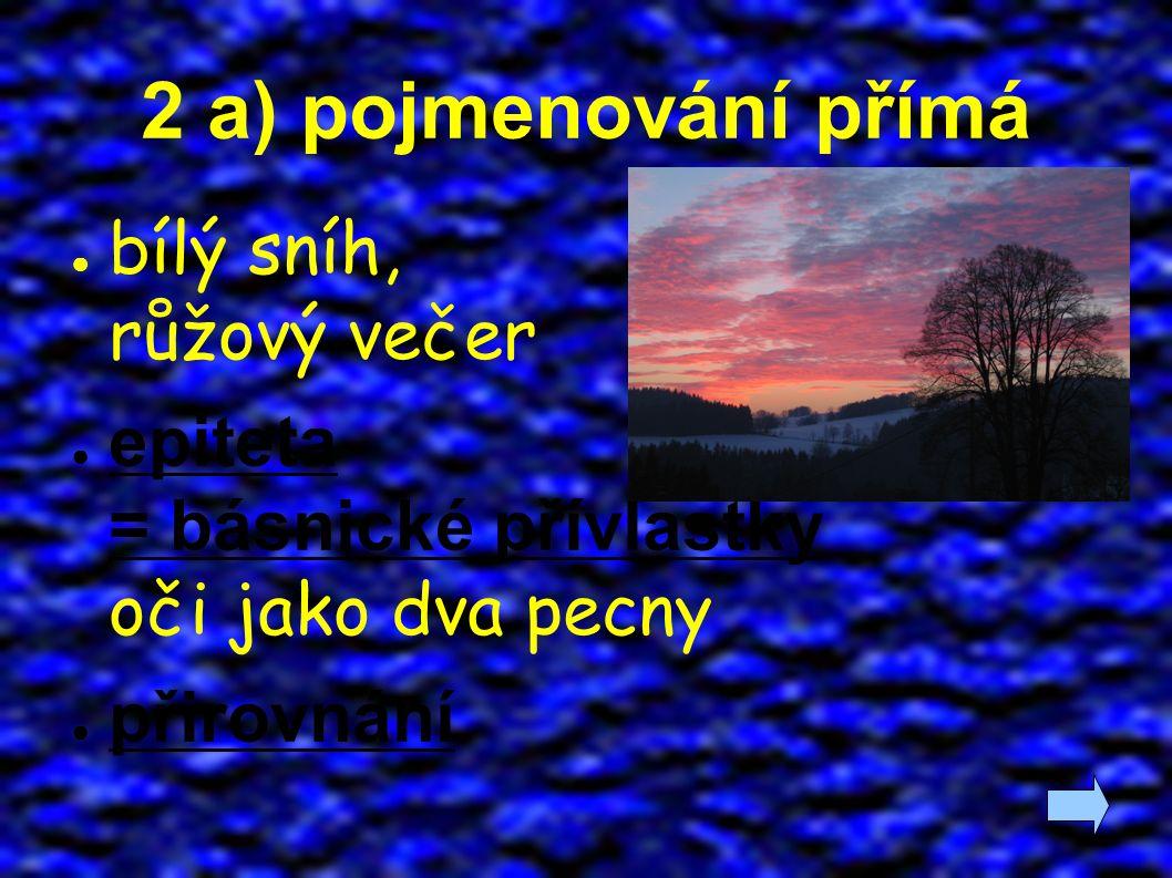 2 a) pojmenování přímá ● bílý sníh, růžový večer ● epiteta = básnické přívlastky oči jako dva pecny ● přirovnání