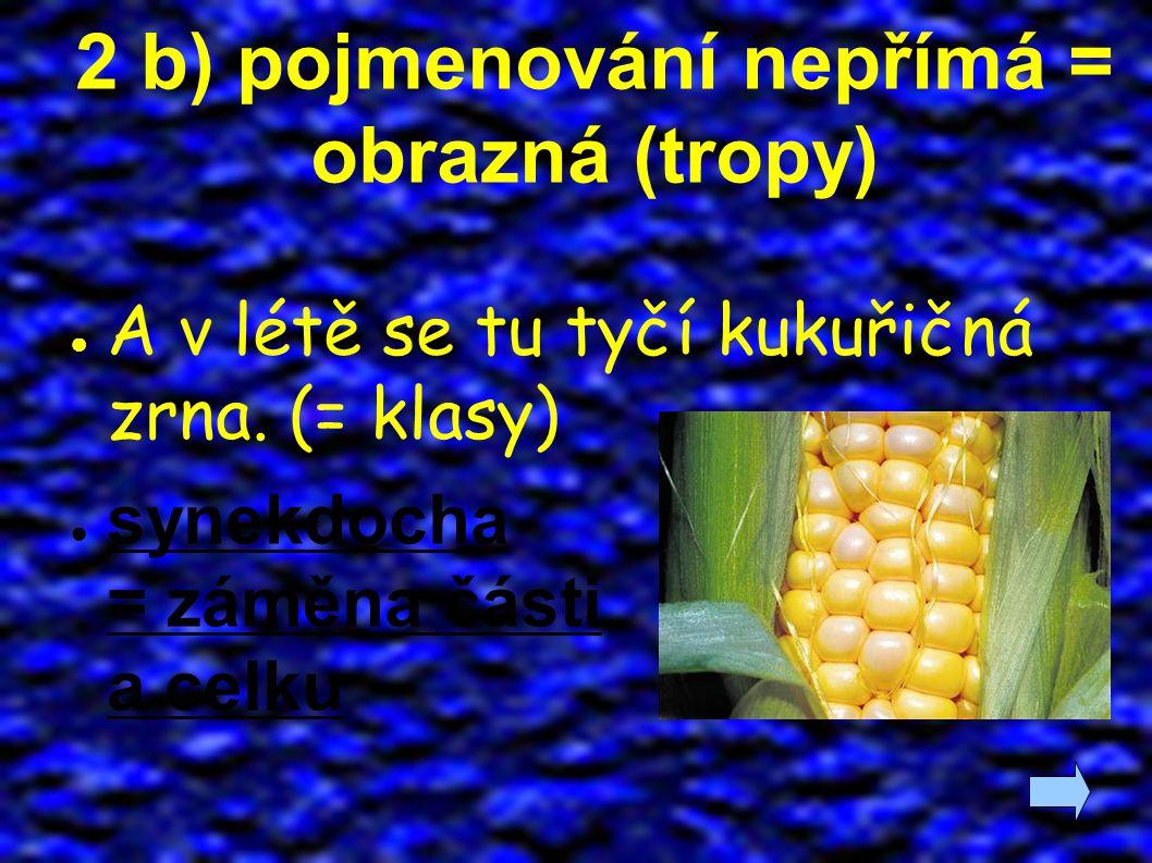 2 b) pojmenování nepřímá = obrazná (tropy) ● A v létě se tu tyčí kukuřičná zrna. (= klasy) ● synekdocha = záměna části a celku