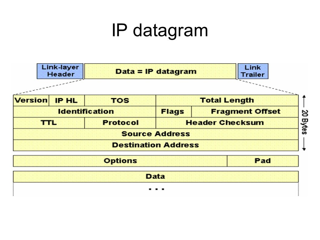 IP datagram