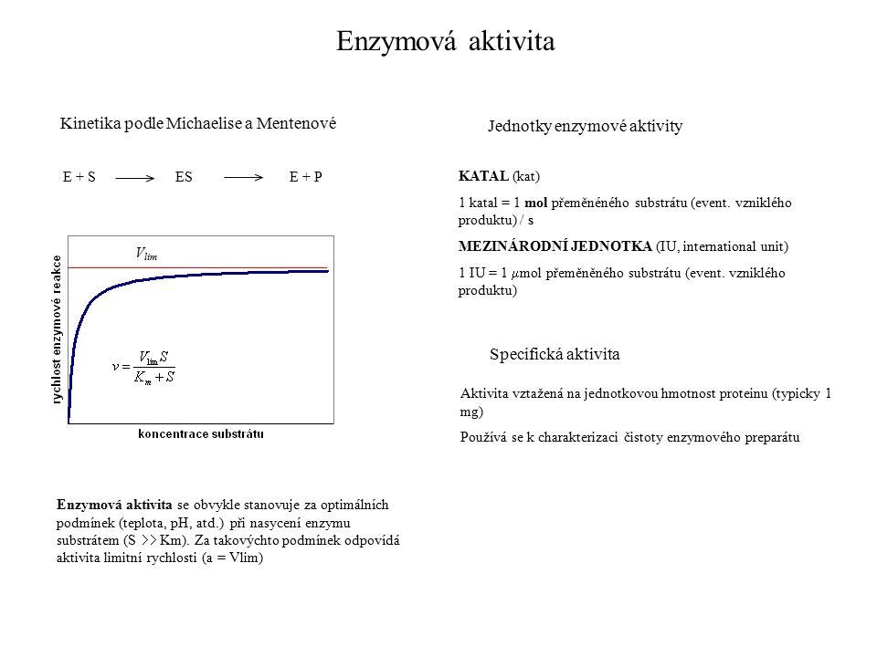 Enzymová aktivita Kinetika podle Michaelise a Mentenové E + SESE + P Jednotky enzymové aktivity KATAL (kat) 1 katal = 1 mol přeměnéného substrátu (event.