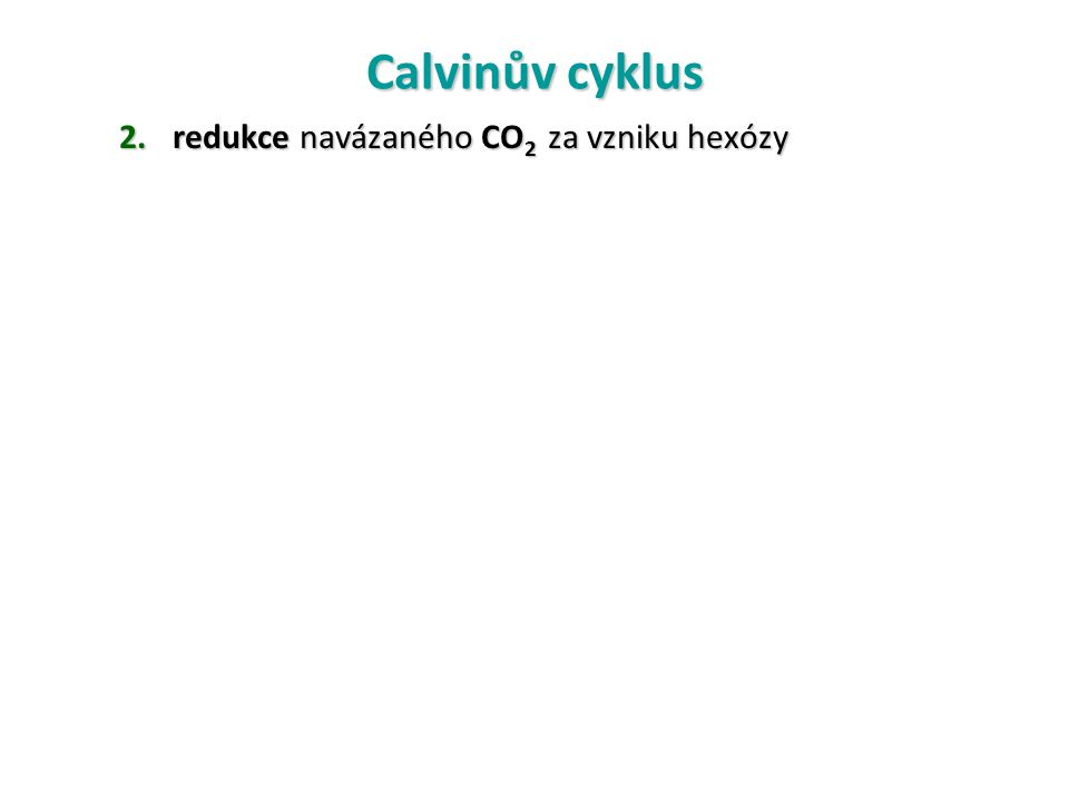 Calvinův cyklus 2.redukce navázaného CO 2 za vzniku hexózy