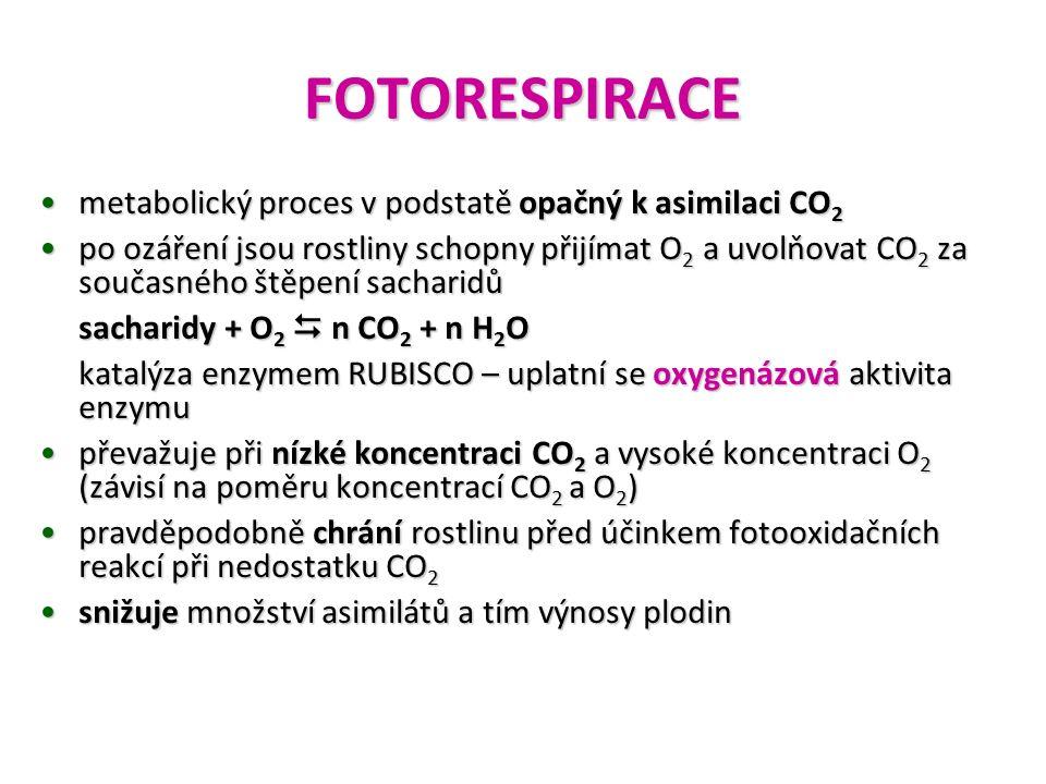 FOTORESPIRACE metabolický proces v podstatě opačný k asimilaci CO 2metabolický proces v podstatě opačný k asimilaci CO 2 po ozáření jsou rostliny scho