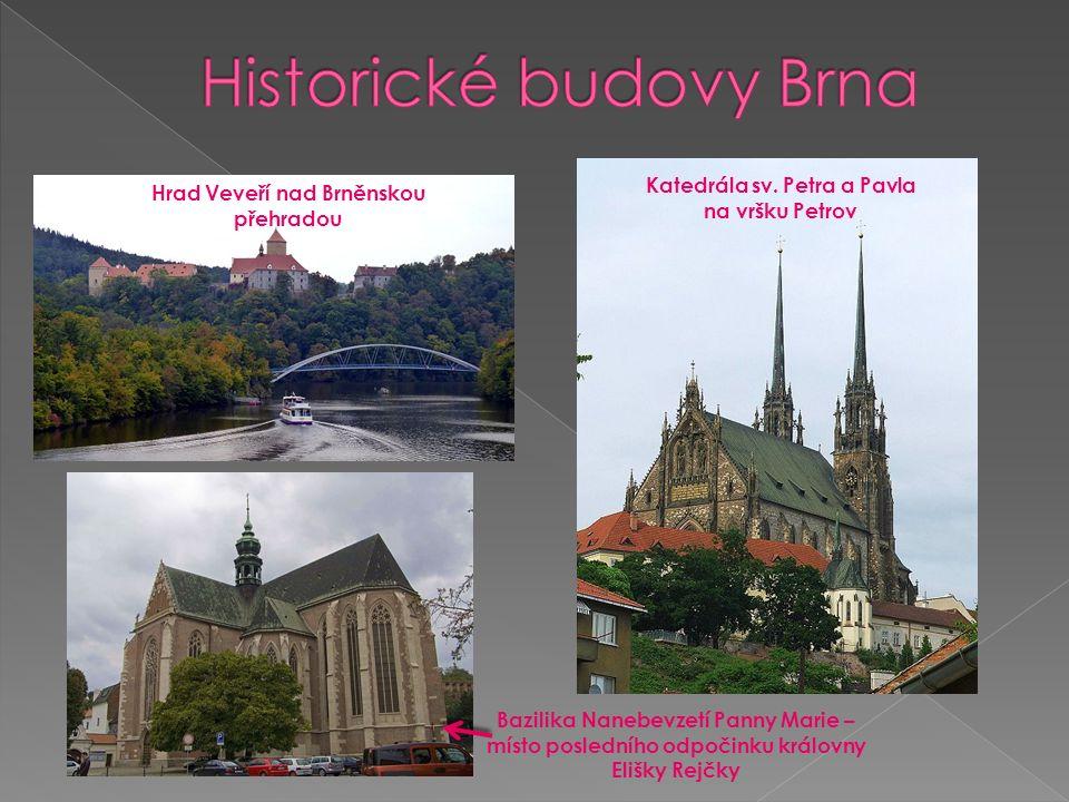 Hrad Veveří nad Brněnskou přehradou Katedrála sv.