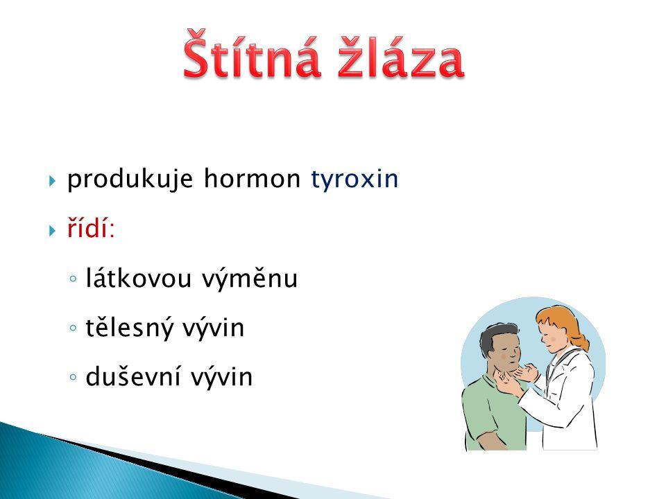  produkuje hormon tyroxin  řídí: ◦ látkovou výměnu ◦ tělesný vývin ◦ duševní vývin