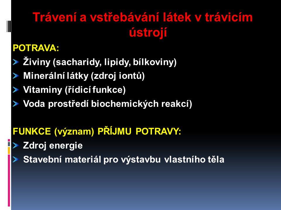 Trávení a vstřebávání látek v trávicím ústrojí POTRAVA: Živiny (sacharidy, lipidy, bílkoviny) Minerální látky (zdroj iontů) Vitaminy (řídicí funkce) Voda prostředí biochemických reakcí) FUNKCE (význam) PŘÍJMU POTRAVY: Zdroj energie Stavební materiál pro výstavbu vlastního těla