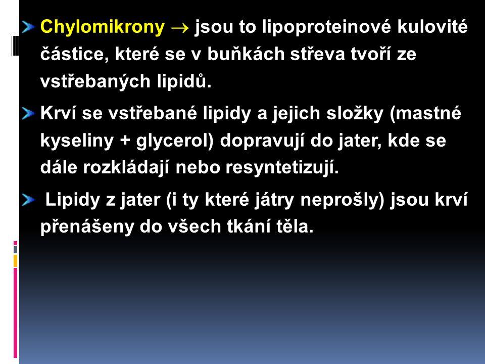 Chylomikrony  jsou to lipoproteinové kulovité částice, které se v buňkách střeva tvoří ze vstřebaných lipidů.