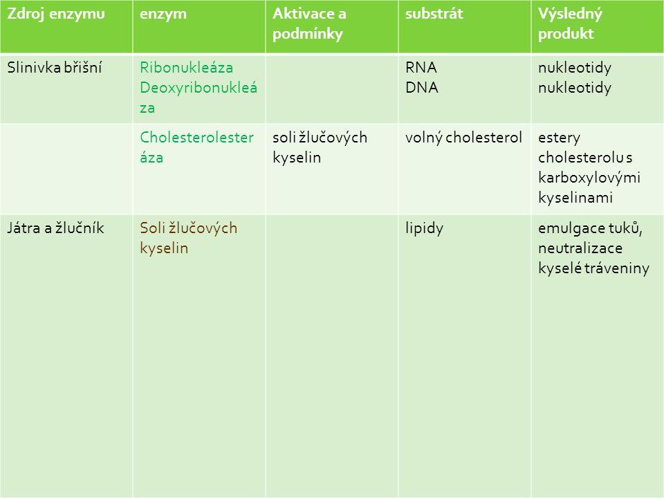 Zdroj enzymuenzymAktivace a podmínky substrátVýsledný produkt Slinivka břišníRibonukleáza Deoxyribonukleá za RNA DNA nukleotidy Cholesterolester áza soli žlučových kyselin volný cholesterolestery cholesterolu s karboxylovými kyselinami Játra a žlučníkSoli žlučových kyselin lipidyemulgace tuků, neutralizace kyselé tráveniny