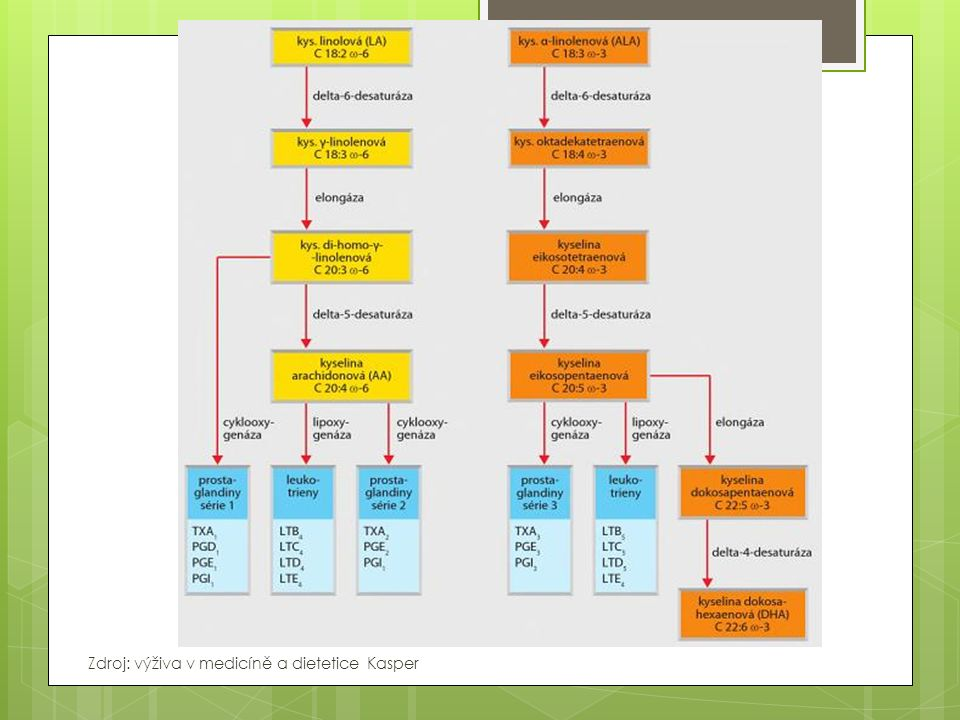 Zdroj: výživa v medicíně a dietetice Kasper