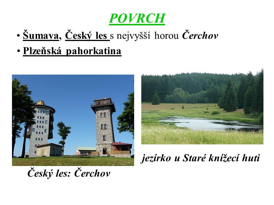 VODSTVO Berounka – vzniká soutokem Mže, Radbuzy, Úhlavy a Úslavy vodní nádrž Hracholusky na řece Mži Černé jezero na Šumavě