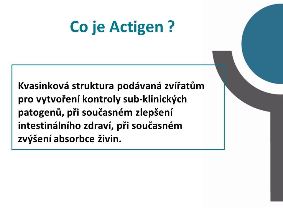 Co je Actigen ? Kvasinková struktura podávaná zvířatům pro vytvoření kontroly sub-klinických patogenů, při současném zlepšení intestinálního zdraví, p