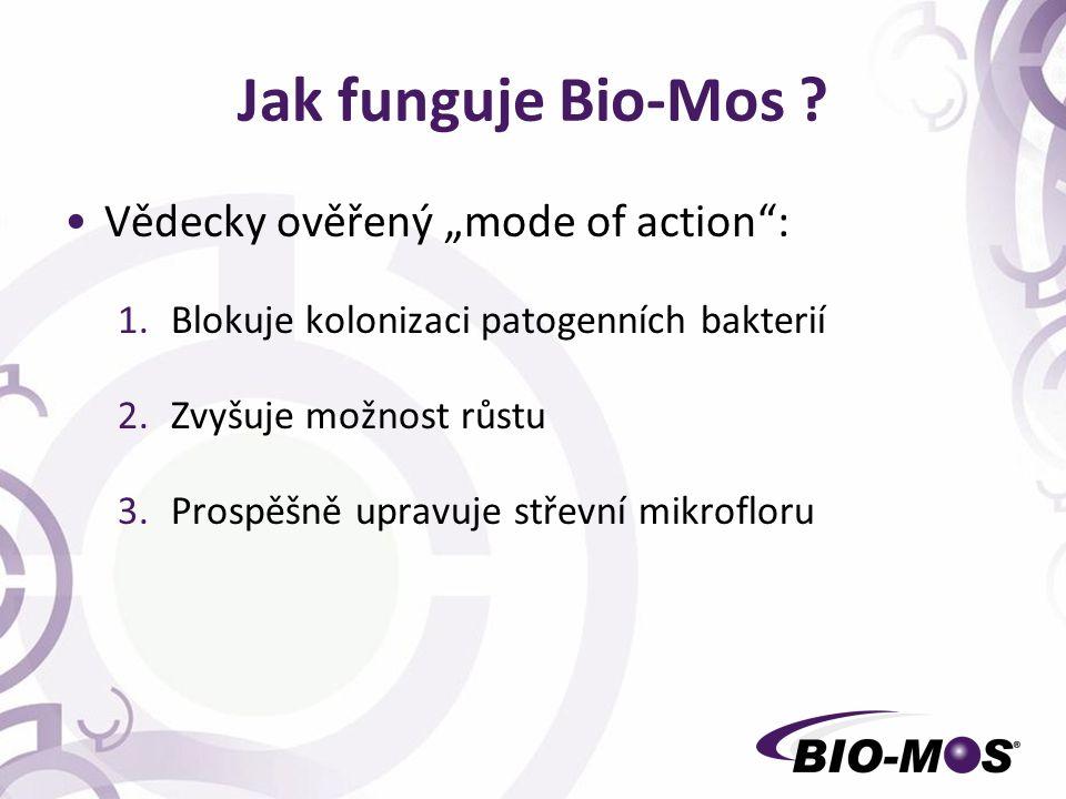 """Jak funguje Bio-Mos ? Vědecky ověřený """"mode of action"""": 1.Blokuje kolonizaci patogenních bakterií 2.Zvyšuje možnost růstu 3.Prospěšně upravuje střevní"""