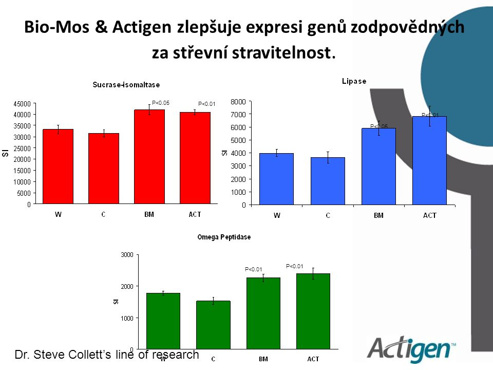 P<0.05 P<0.01 P<0.05 P<0.01 Bio-Mos & Actigen zlepšuje expresi genů zodpovědných za střevní stravitelnost.