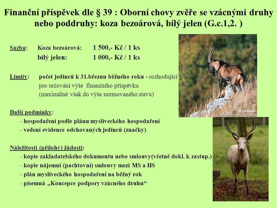Finanční příspěvek dle § 39 : Oborní chovy zvěře se vzácnými druhy nebo poddruhy: koza bezoárová, bílý jelen (G.c.1,2.