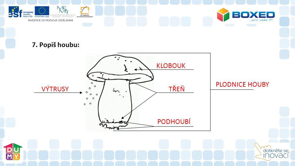 7. Popiš houbu: VÝTRUSY KLOBOUK PODHOUBÍ TŘEŇ PLODNICE HOUBY