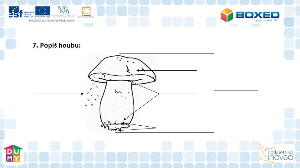 7. Popiš houbu: