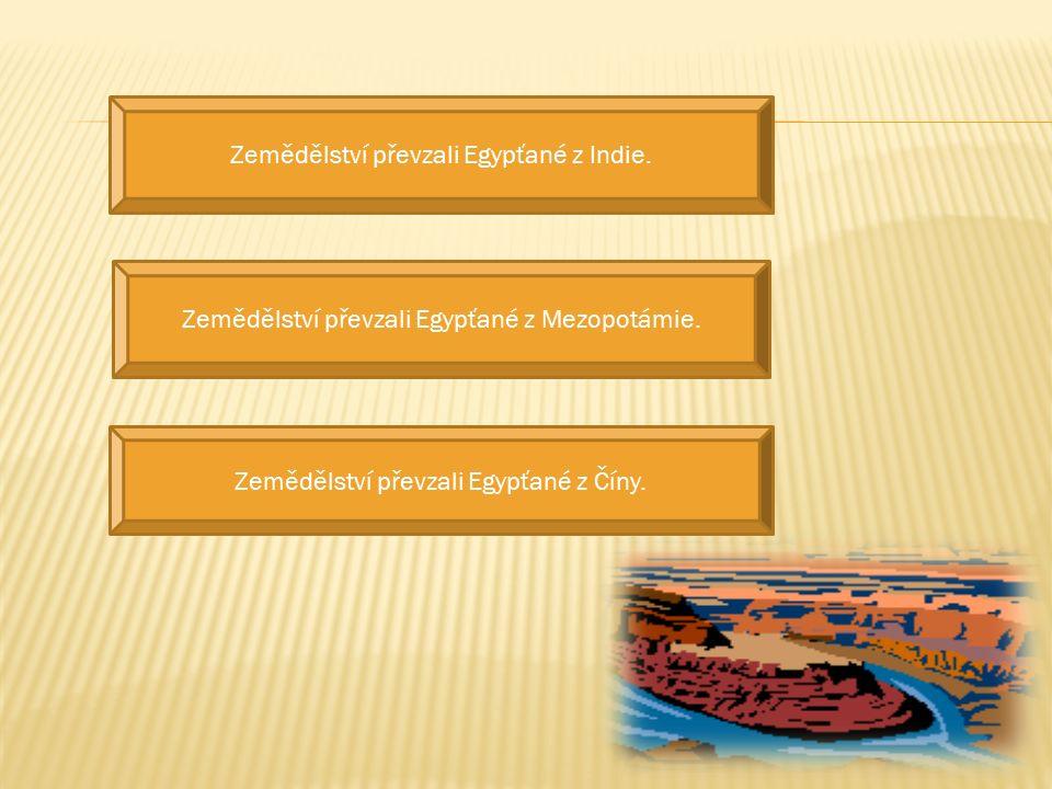 Zikkuraty byly stupňovité stavby v Egyptě.Zikkuraty byly stupňovité stavby v Indii.
