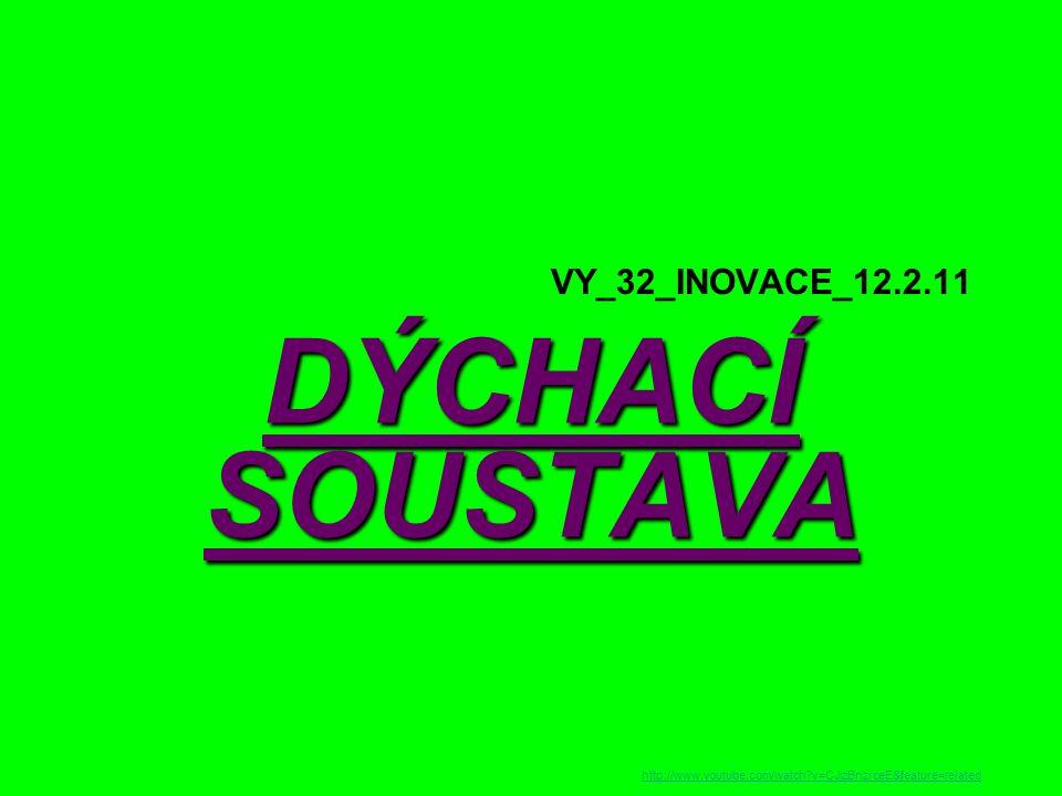 a/ hrtan Složen z hrtanových chrupavek (největší chrupavka štítná – ohryzek) s hlasovým ústrojím http://duef.uniza.sk/index.php?go=prednasky&prednaska=6