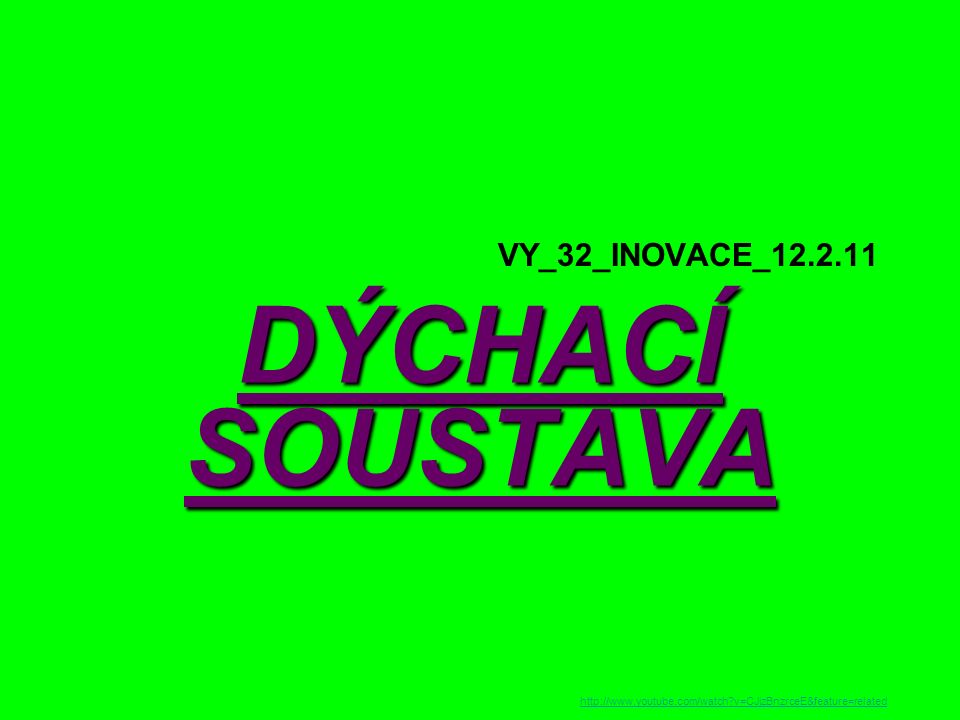 VY_32_INOVACE_12.2.11 DÝCHACÍ SOUSTAVA http://www.youtube.com/watch?v=CJjzBnzrceE&feature=related