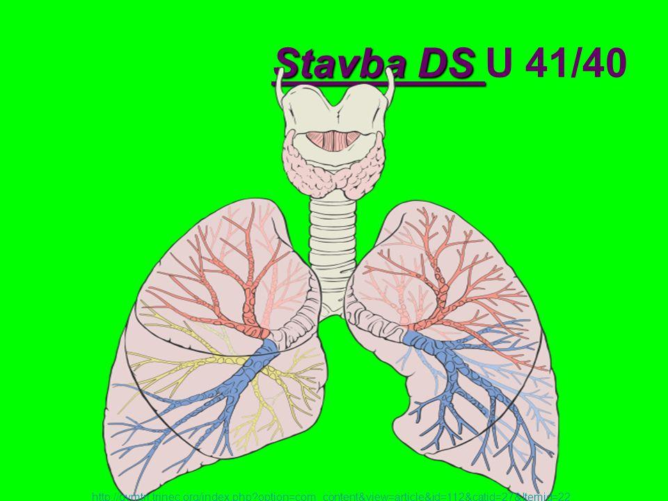 Zbytkový vzduch Objem vzduchu, který zůstává v plicích po maximálním výdechu Vyplňuje plicní sklípky