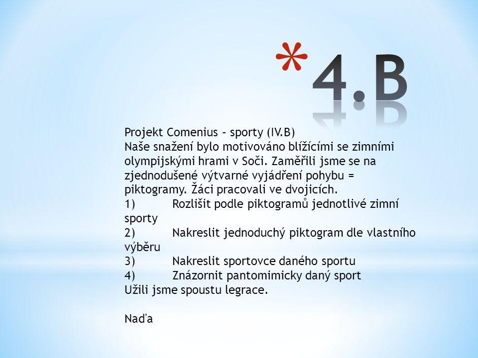 Projekt Comenius – sporty (IV.B) Naše snažení bylo motivováno blížícími se zimními olympijskými hrami v Soči. Zaměřili jsme se na zjednodušené výtvarn