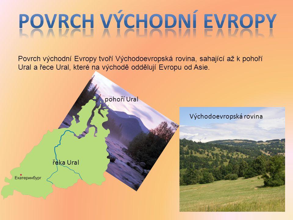 Povrch východní Evropy tvoří Východoevropská rovina, sahající až k pohoří Ural a řece Ural, které na východě oddělují Evropu od Asie.