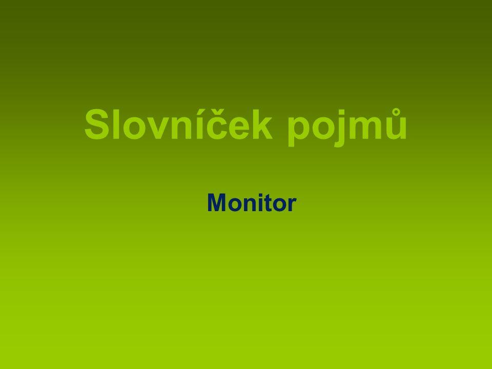 Slovníček pojmů Monitor
