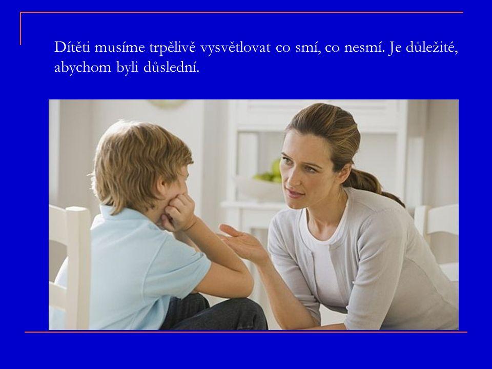 Dítěti musíme trpělivě vysvětlovat co smí, co nesmí. Je důležité, abychom byli důslední.