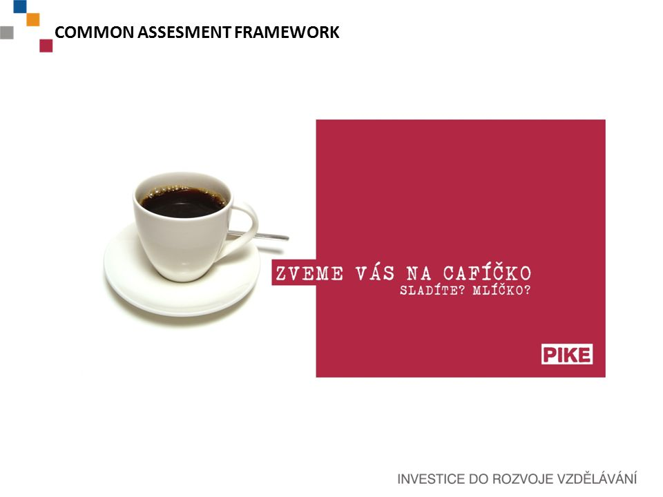 COMMON ASSESMENT FRAMEWORK
