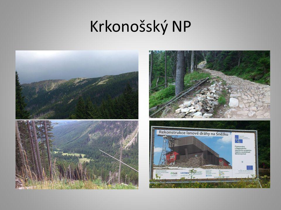 Krkonošský NP