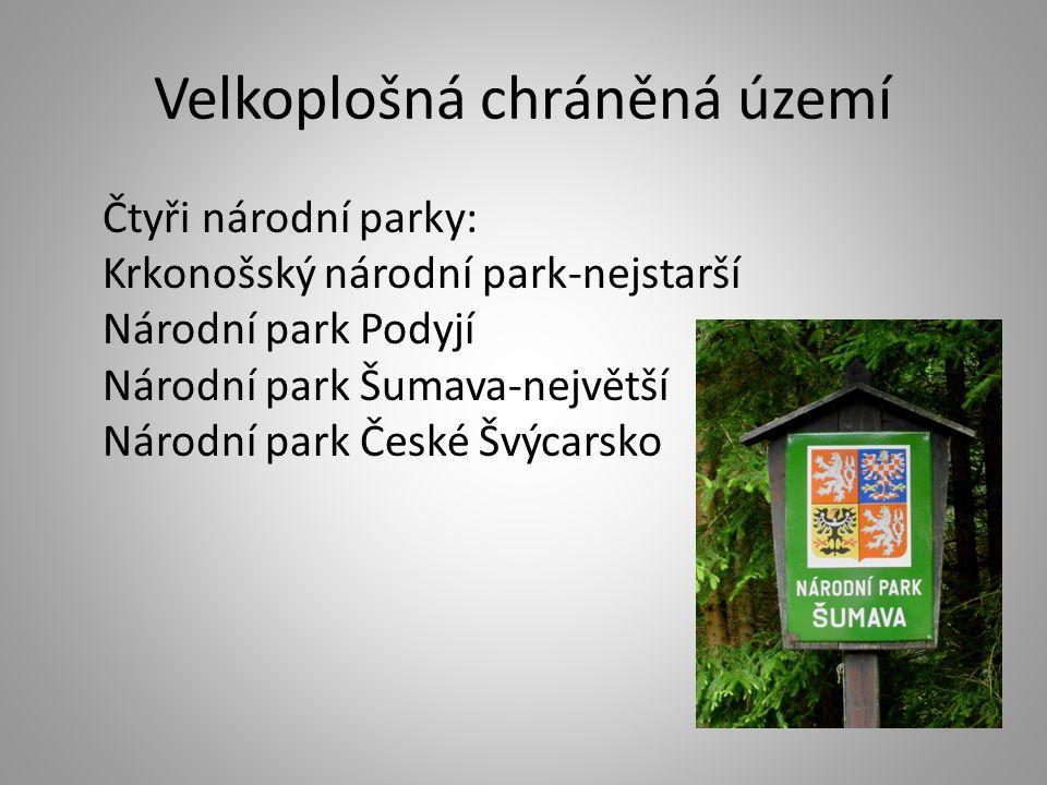 Velkoplošná chráněná území Čtyři národní parky: Krkonošský národní park-nejstarší Národní park Podyjí Národní park Šumava-největší Národní park České Švýcarsko