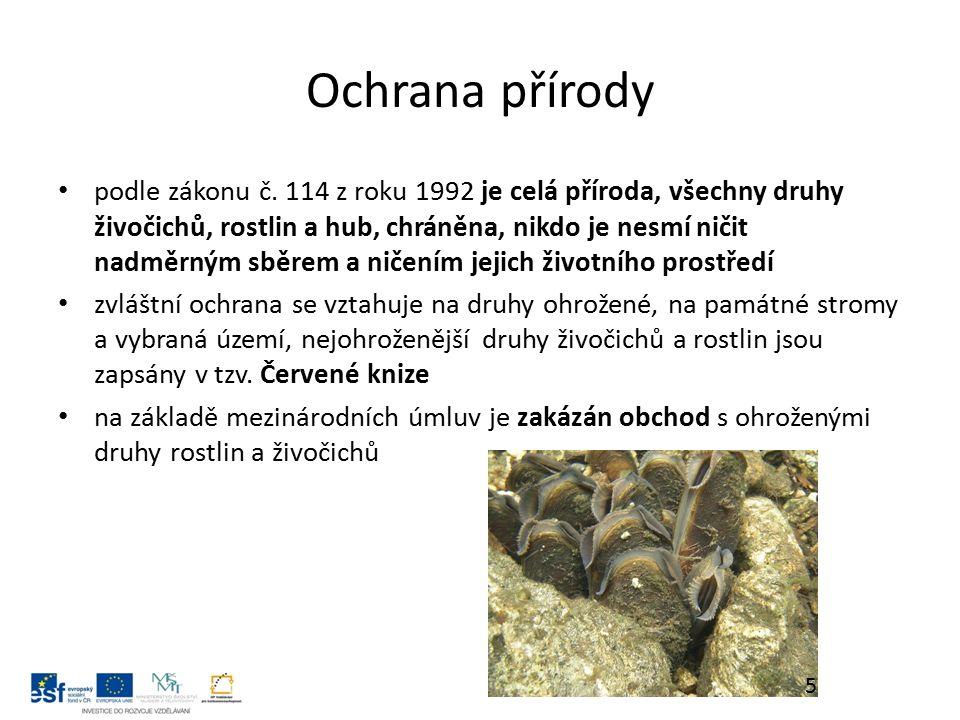 Ochrana přírody podle zákonu č.