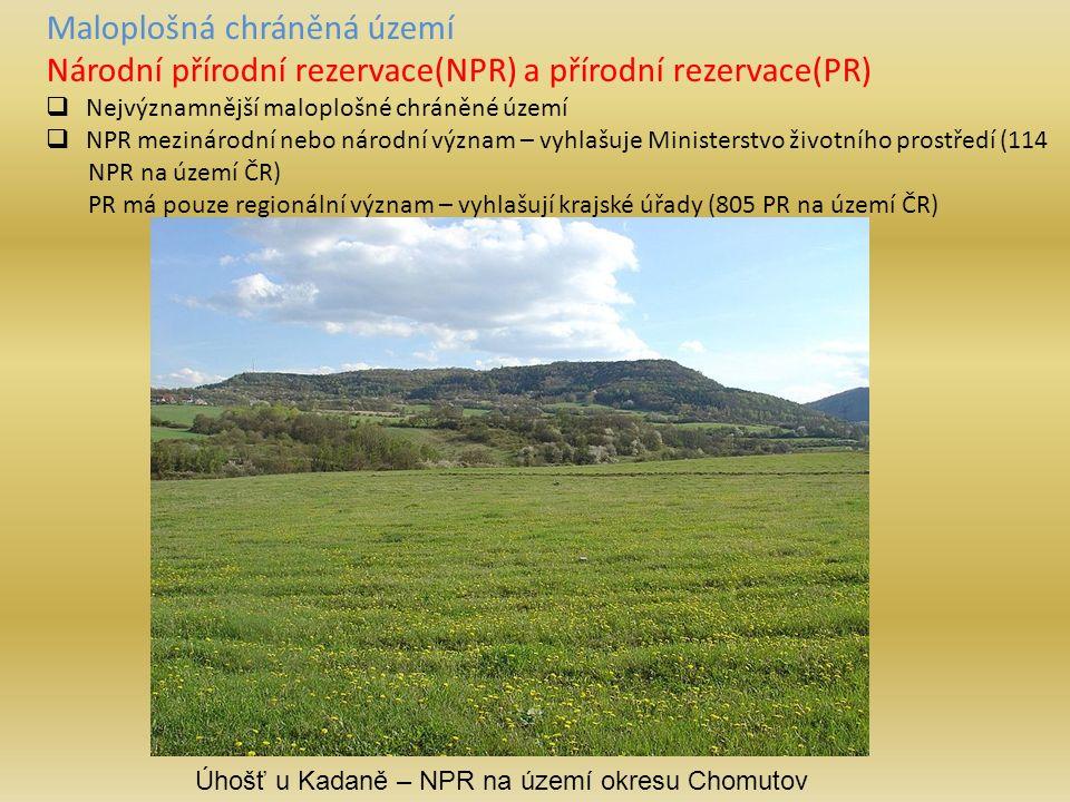 Maloplošná chráněná území Národní přírodní rezervace(NPR) a přírodní rezervace(PR)  Nejvýznamnější maloplošné chráněné území  NPR mezinárodní nebo národní význam – vyhlašuje Ministerstvo životního prostředí (114 NPR na území ČR) PR má pouze regionální význam – vyhlašují krajské úřady (805 PR na území ČR) Úhošť u Kadaně – NPR na území okresu Chomutov