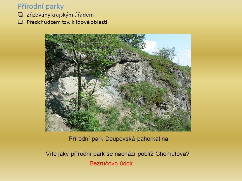 Přírodní parky  Zřizovány krajským úřadem  Předchůdcem tzv.