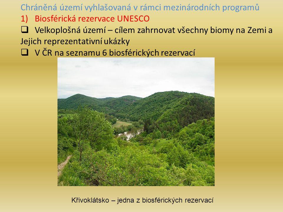 Chráněná území vyhlašovaná v rámci mezinárodních programů 1)Biosférická rezervace UNESCO  Velkoplošná území – cílem zahrnovat všechny biomy na Zemi a Jejich reprezentativní ukázky  V ČR na seznamu 6 biosférických rezervací Křivoklátsko – jedna z biosférických rezervací