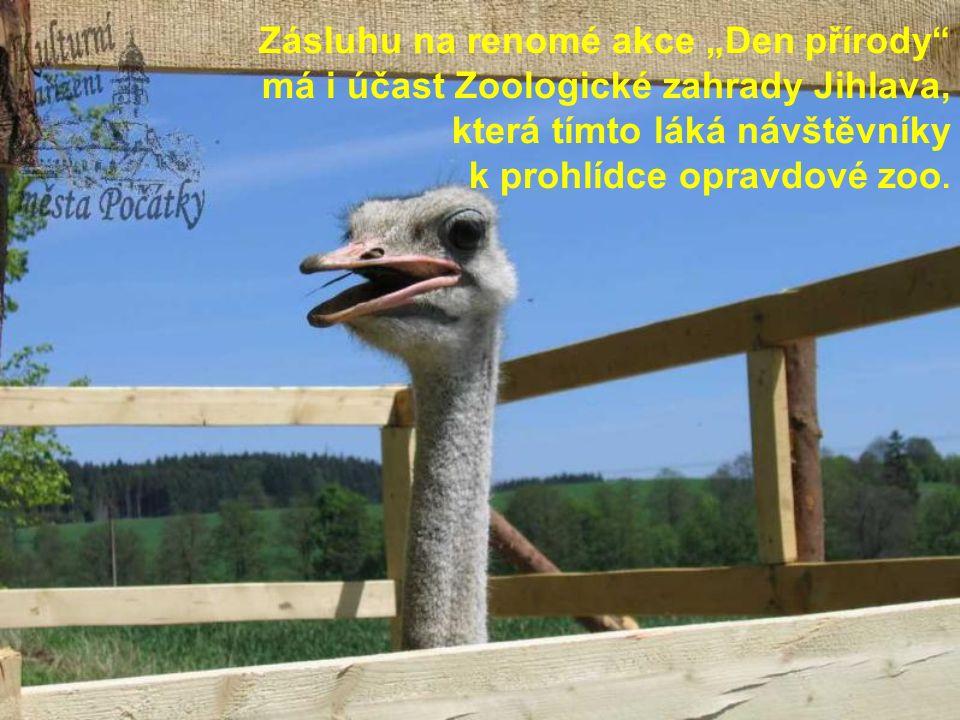 """Zásluhu na renomé akce """"Den přírody má i účast Zoologické zahrady Jihlava, která tímto láká návštěvníky k prohlídce opravdové zoo."""