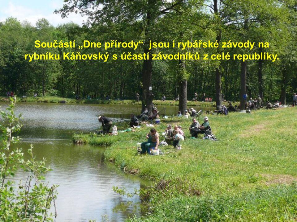 """Součástí """"Dne přírody jsou i rybářské závody na rybníku Káňovský s účastí závodníků z celé republiky."""